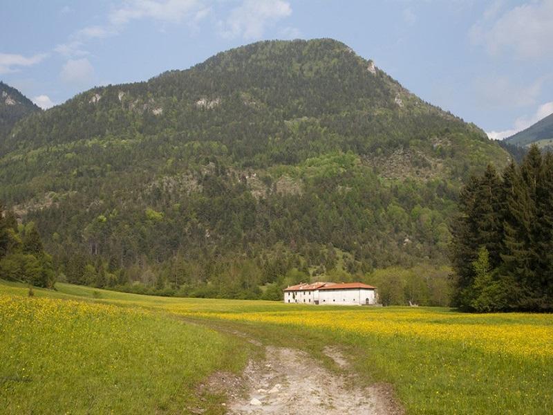 Silenzio E Natura Nella Val Di Tede Con Assaggi In Agriturismo